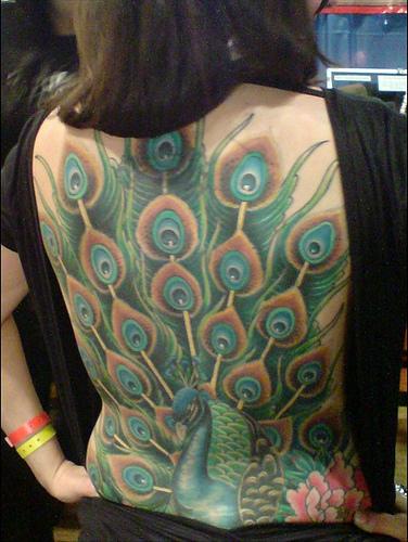 modele tatouage plume de paon